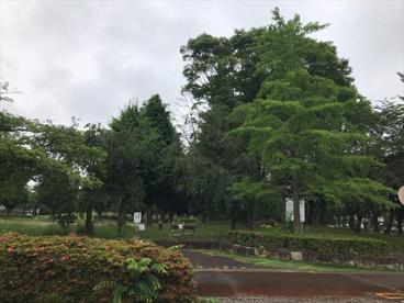 吉羽公園(久喜市吉羽1丁目)の画像1