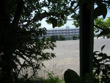 府中市立府中第八中学校の画像1