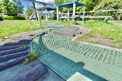 大泉橋戸公園の画像3