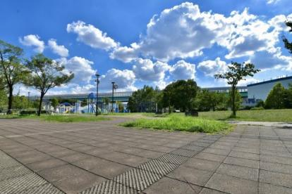 大泉橋戸公園の画像4