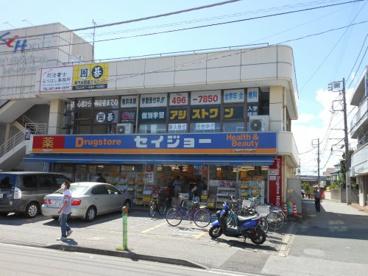 くすりセイジョー薬園台駅前店の画像1