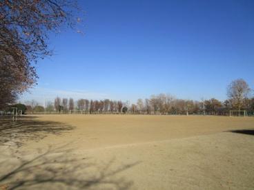 大間木公園の画像1