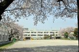杉並区八成小学校