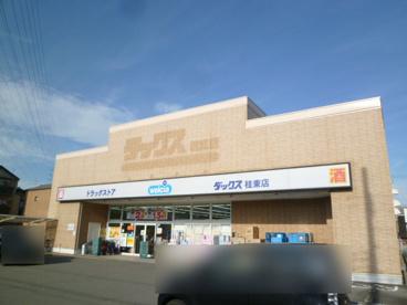 ダックス桂東店の画像1