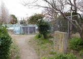 桜ヶ丘児童水遊び場