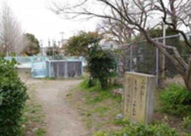 桜ヶ丘児童水遊び場の画像1