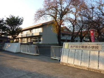 水戸市立堀原小学校の画像1