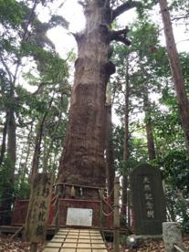麻賀多神社の画像2