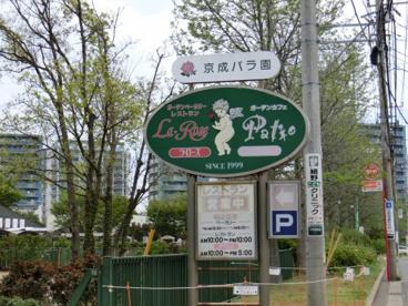 京成バラ園の画像2