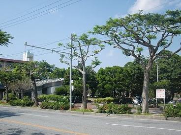 松山公園の画像1