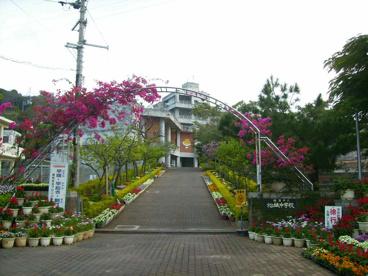 松城中学校の画像1