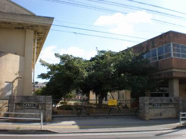 真和志小学校の画像1