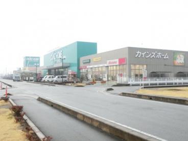 カインズホーム行田店の画像1