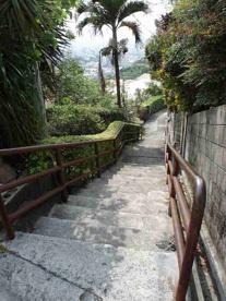 崎山公園の画像3