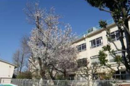 豊島区立西巣鴨小学校の画像1