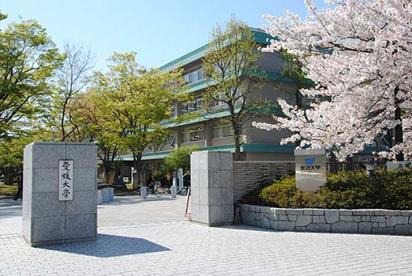 愛媛大学の画像1