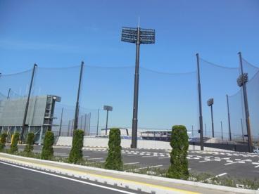 タマホームスタジアム筑後の画像2