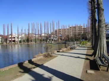 別所沼公園の画像1