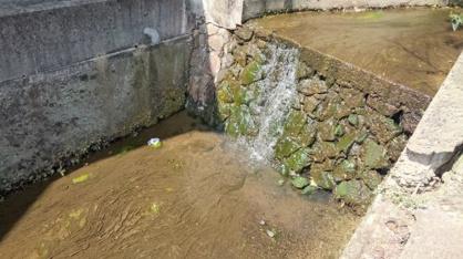 蛍池・北の滝の画像2