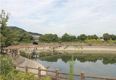 中池公園の画像1