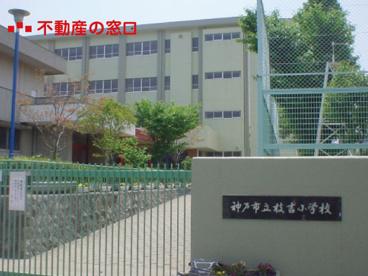 枝吉小学校の画像1