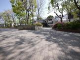 大豆戸桜田公園