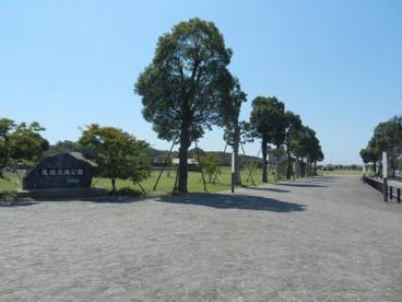 筑後広域公園の画像1