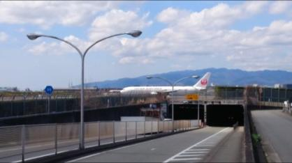 後方注意!!飛行機が来てますよ。の画像2