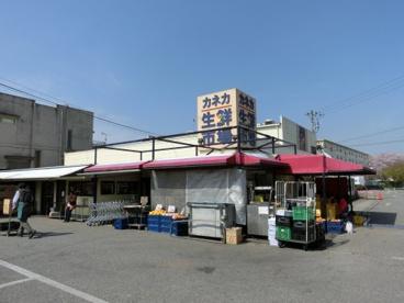 カネカ水産(株) 本部・花見川店の画像1