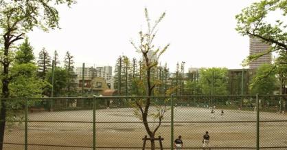 北新宿公園の画像1