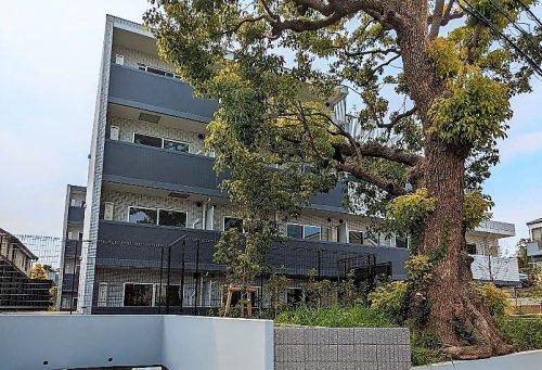 新渡戸稲造 旧居跡の画像