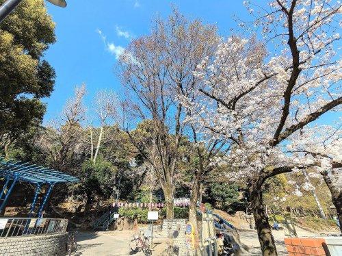 区立江戸川公園の画像
