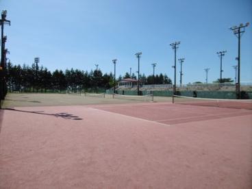 黒石市運動公園の画像4