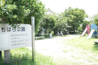 ちばら公園の画像2