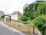 タカマサイ公園