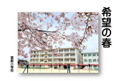 宮前小学校の画像1