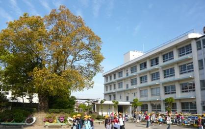 浮穴小学校の画像1