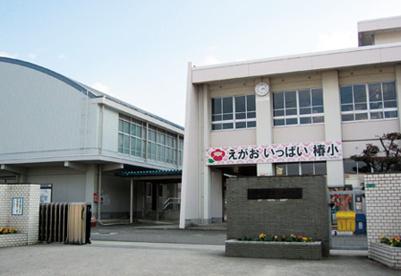 椿小学校の画像1
