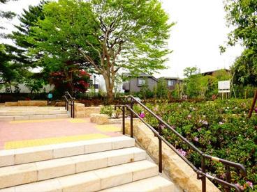 赤松ぼっくり庭園緑地の画像2