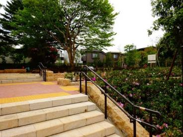 赤松ぼっくり庭園緑地の画像3