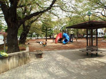 大谷場公園の画像1