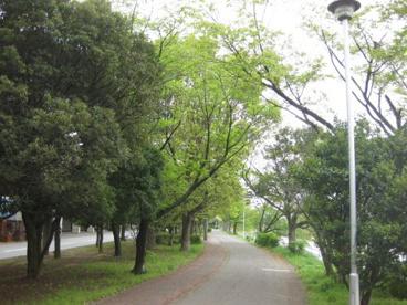 弦代公園(久喜市桜田4丁目)の画像1