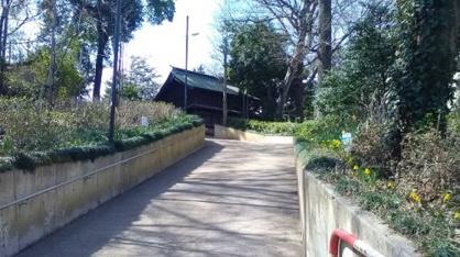 大谷場氷川神社の画像1
