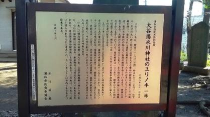 大谷場氷川神社の画像4