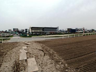 浦和競馬場の画像2