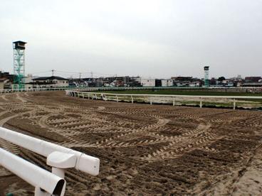浦和競馬場の画像3