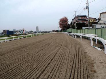 浦和競馬場の画像4