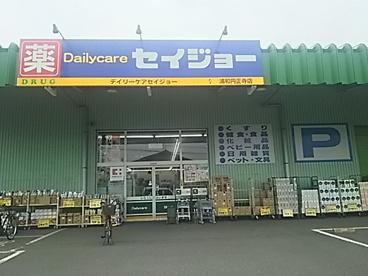 セイジョー浦和円正寺店の画像1