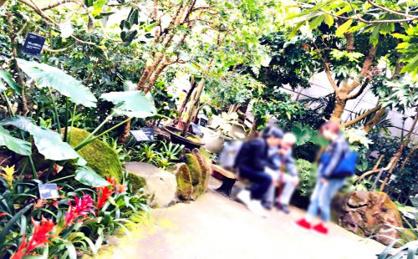 宇治市植物公園の画像2