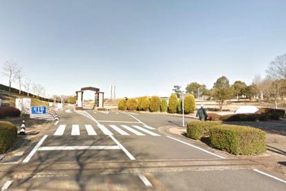 太陽が丘公園(宇治川ゲート)の画像5